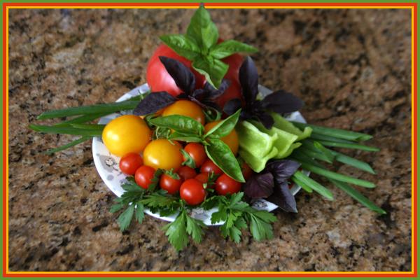 Овощи.jpg (600x400, 263Kb)