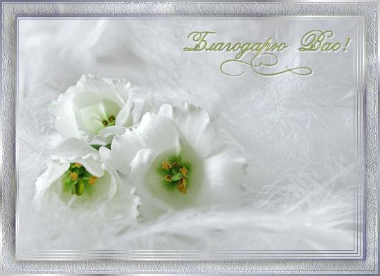 http://www.liveinternet.ru/images/attach/170/170448_blagvas.jpg