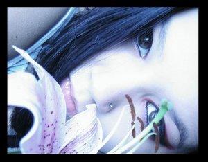 http://www.liveinternet.ru/images/attach/171/171270_13199_904975.jpg