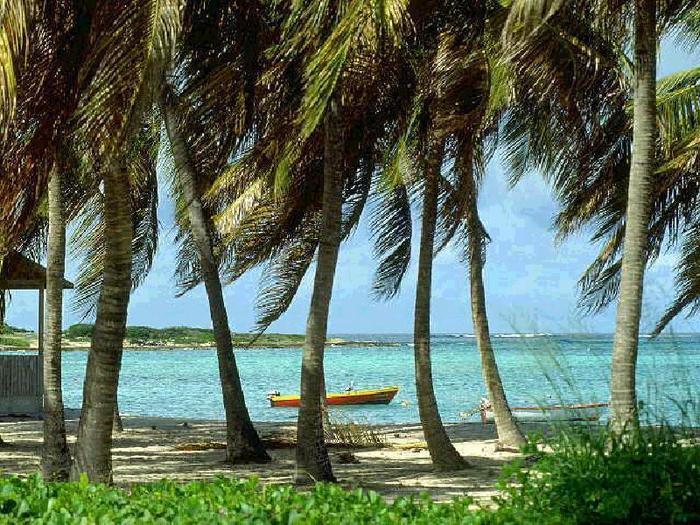 http://www.liveinternet.ru/images/attach/251/251875_Cayman_East_End.jpg