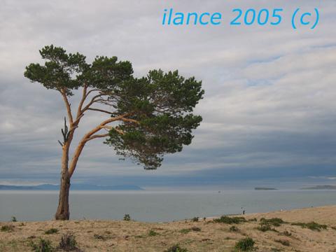 Вид 5.jpg (480x360, 77Kb)