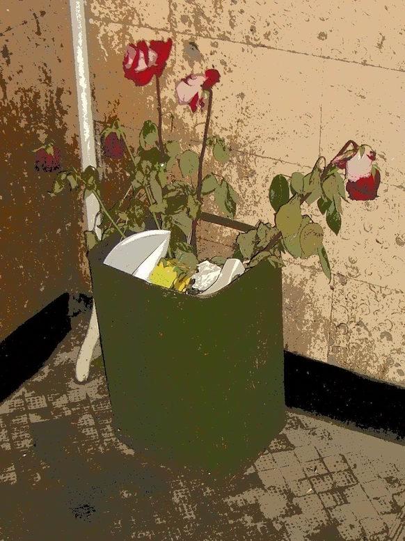 Цветы на помойке фото