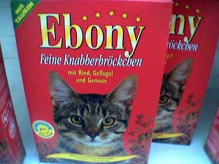cat_korm.jpg (450x338, 22Kb)