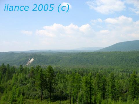 Тайга.jpg (480x360, 80Kb)