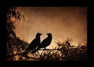 http://www.liveinternet.ru/images/attach/466/466030_Dark_Lovers_by_SubterfugeMalaises.jpg