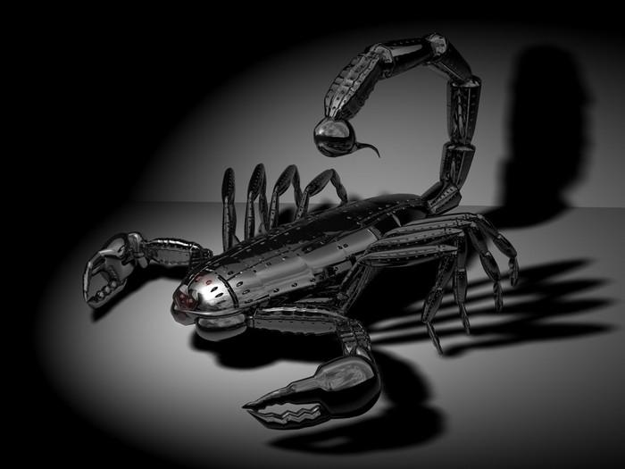 Scorpion.jpg (700x525, 47Kb)