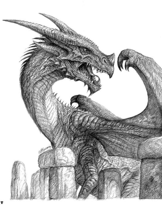 bw-dragon073.jpg (553x700, 70Kb)