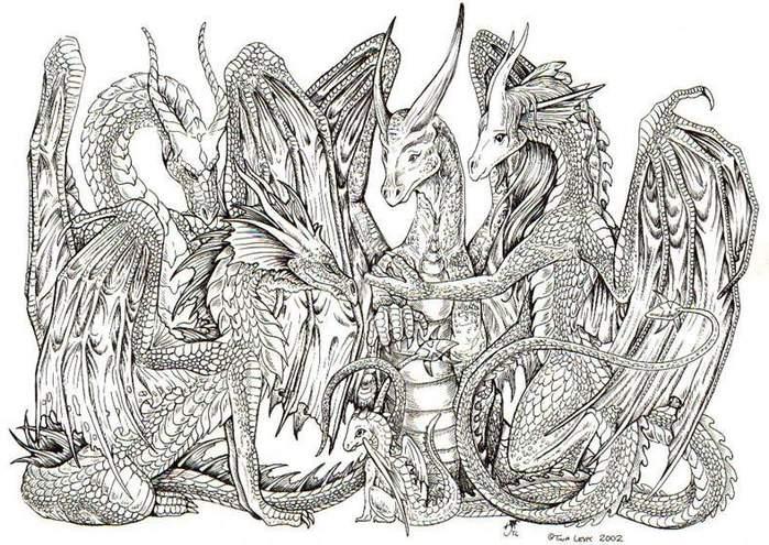 dragon_friends_vcla.jpg (699x495, 101Kb)