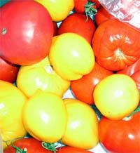 помидор.jpg (200x218, 28Kb)