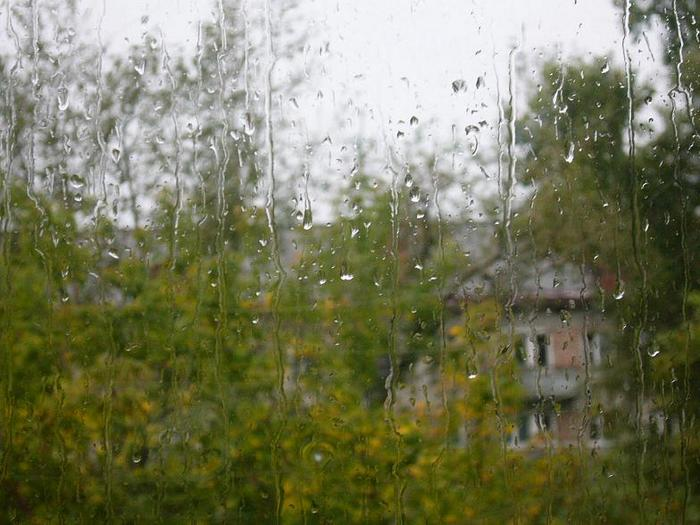 дождь.JPG (700x525, 60Kb)