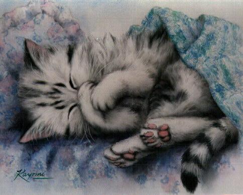 Спокойной Ночи .  Сладких снов.