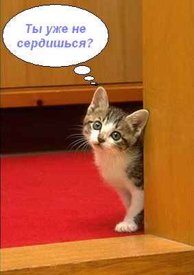 kitten169.jpg (283x400, 29Kb)