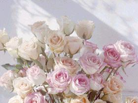 свадеб розы.jpg (280x210, 11Kb)