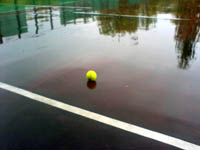 Ball.jpg (200x150, 21Kb)
