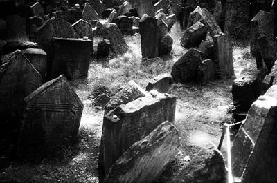 graves.jpg (400x265, 76Kb)