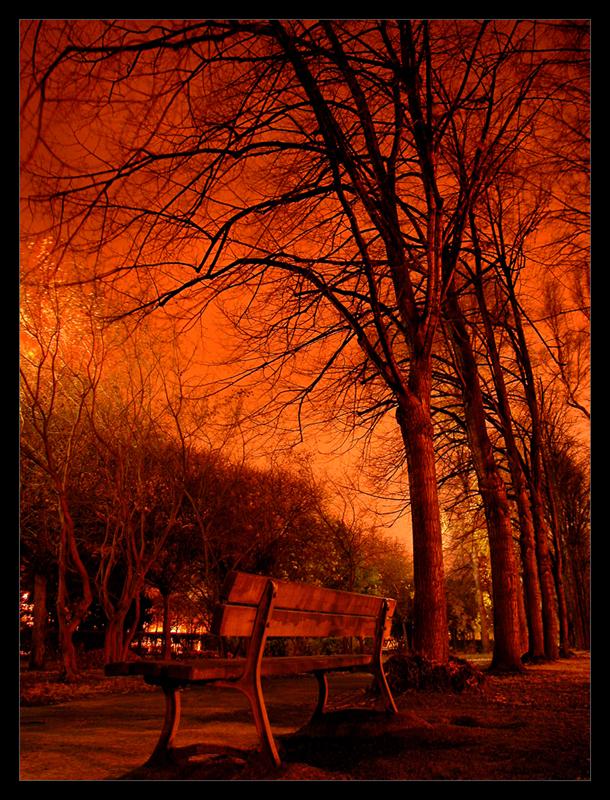 Midnight_Pollution_by_x_horizon.jpg (610x800, 743Kb)