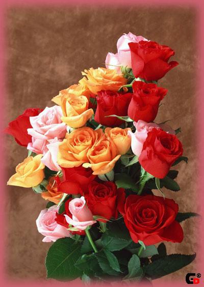 цветы.jpg (400x563, 54Kb)