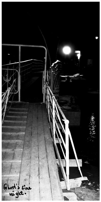 night.jpg (426x850, 103Kb)