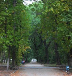 park.jpg (300x318, 27Kb)