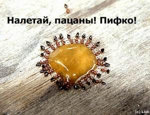 http://www.liveinternet.ru/images/attach/774885/1865960.jpg