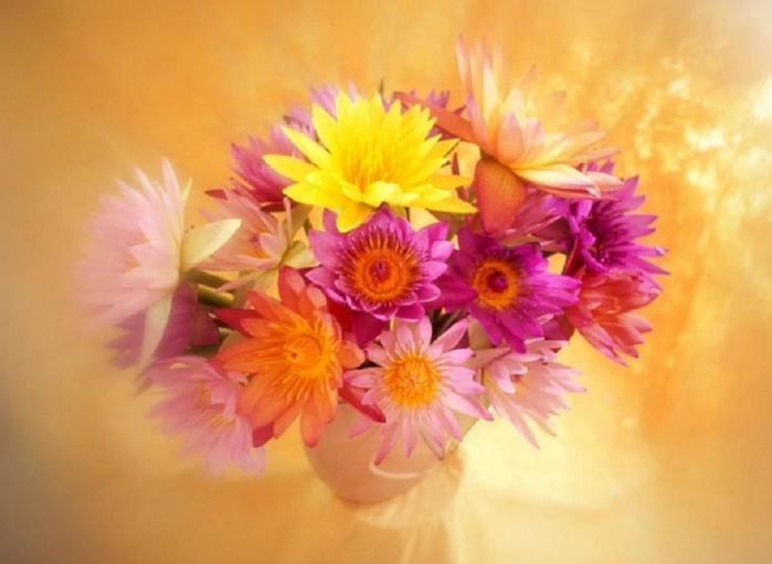 http://www.liveinternet.ru/images/attach/3466/3466006.jpg